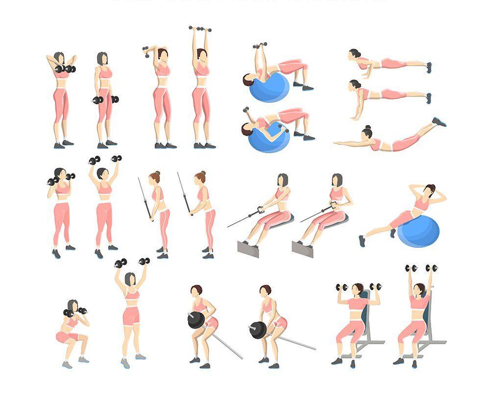 Rutina de ejercicios brazos y espalda reto salter challenge